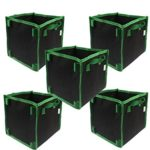 5 Gallon air pots for growing tomatoes