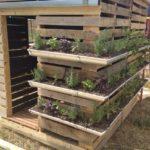 Gutter garden on shed walls