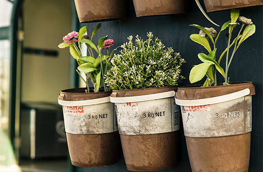Balcony vegetable gardening ideas