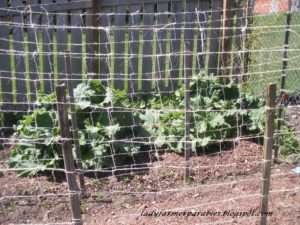 Woven pea trellis for your garden.