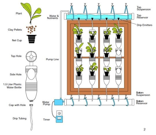 apartment gardening tip - go vertical with your garden