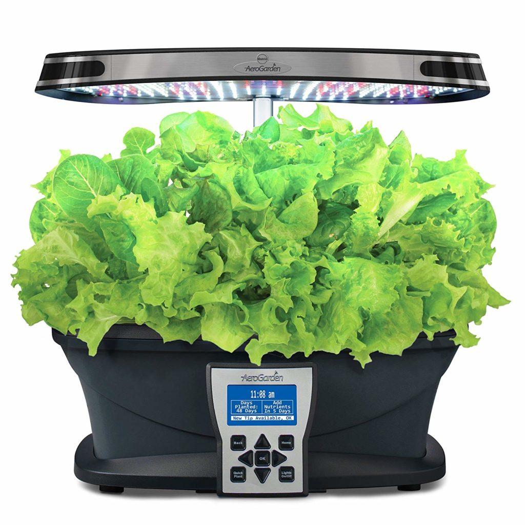 AeroGarden apartment gardening