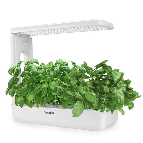 VegeBox hydroponic indoor growing kit
